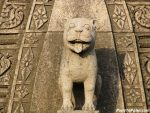 Lion on Shikar