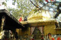 Chintpurni Temple_Himachal