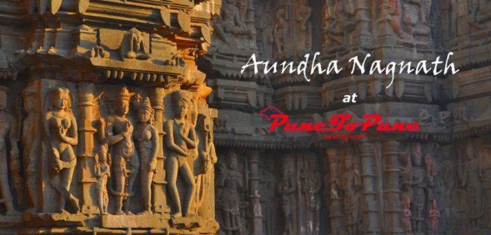 sculptures of Aundha Nagnath_punetopune